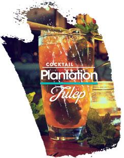 Drink Plantation Julep