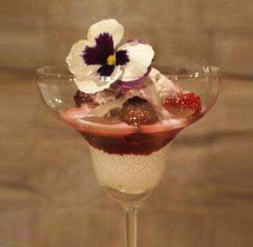Sorvete de vinho tinto e especiarias Salton