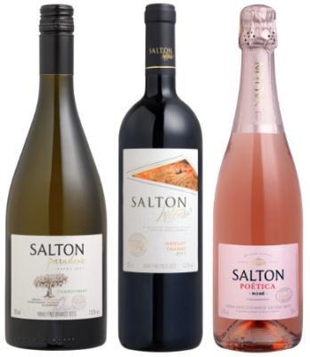 Salton fecha parceria com o Dinner in the Sky