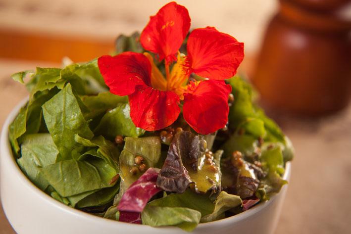 Biocarioca lança saladas com flores comestíveis para a nova estação